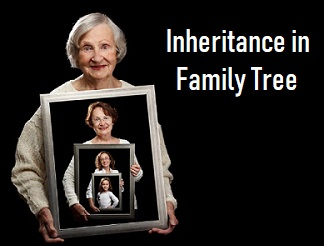 Top 10 Interview questions in Inheritance for beginners